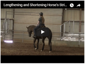 Lenghtening and Shortening of Strides
