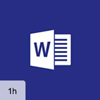 Word 2016 - Working with the Interface and Performing Basic Tasks