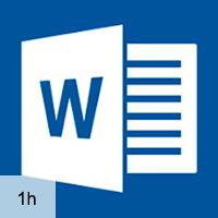 Word 2013 - Advanced Formatting