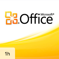 Office 2010 Interface, Word 2010, and Excel 2010