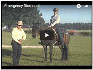 The Emergency Dismount
