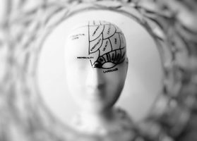 Increasing Your Brain's Performance For Greater Leadership Success