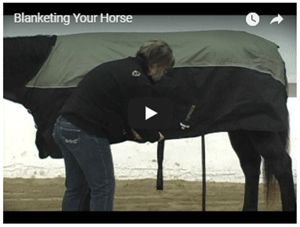 Blanketing Your Horse