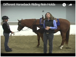 Different Rein Holds