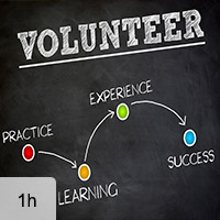 Engaging Pro Bono and Skilled Volunteers