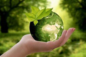 Advanced Course on Nonprofit Sustainability