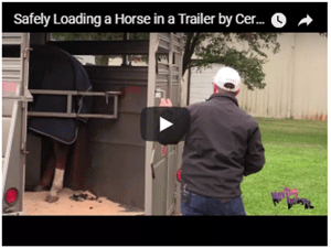 Loading a Horse Safely into a Trailer