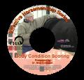 Body Condition Scoring DVD ($45/$34)