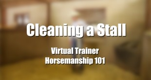 Cleaning a Stall – Reed Kyle