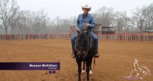 Versatility Ranch Horse – Mozaun McKibben