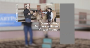 Dismounting – Barbara Williams