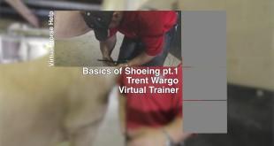 Basics of Shoeing Part 1 – Trent Wargo
