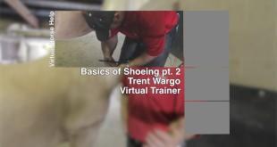 Basics of Shoeing Part 2 – Trent Wargo