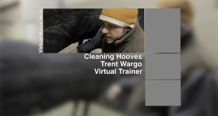 Cleaning Hooves – Trent Wargo
