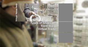 Shoe Types Part One – Trent Wargo