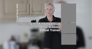 Choosing a Stud – Barb Wibbles