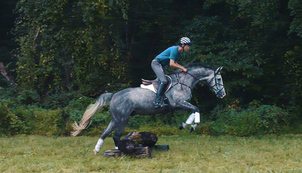 Eventing Training Videos, from US Equestrian (USEF)