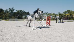 Show Jumping Training Videos, from US Equestrian (USEF)