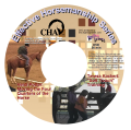 """Soft Touch"" Training and Moving the Four Quarters of the Horse DVD ($45/$34)"