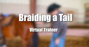 Braiding a Tail – Tom McCutcheon